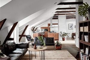 哥德堡阁楼公寓 北欧简约风老宅